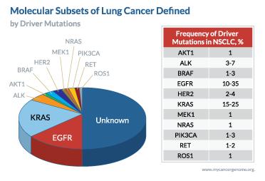 biocept-lung-diagram1