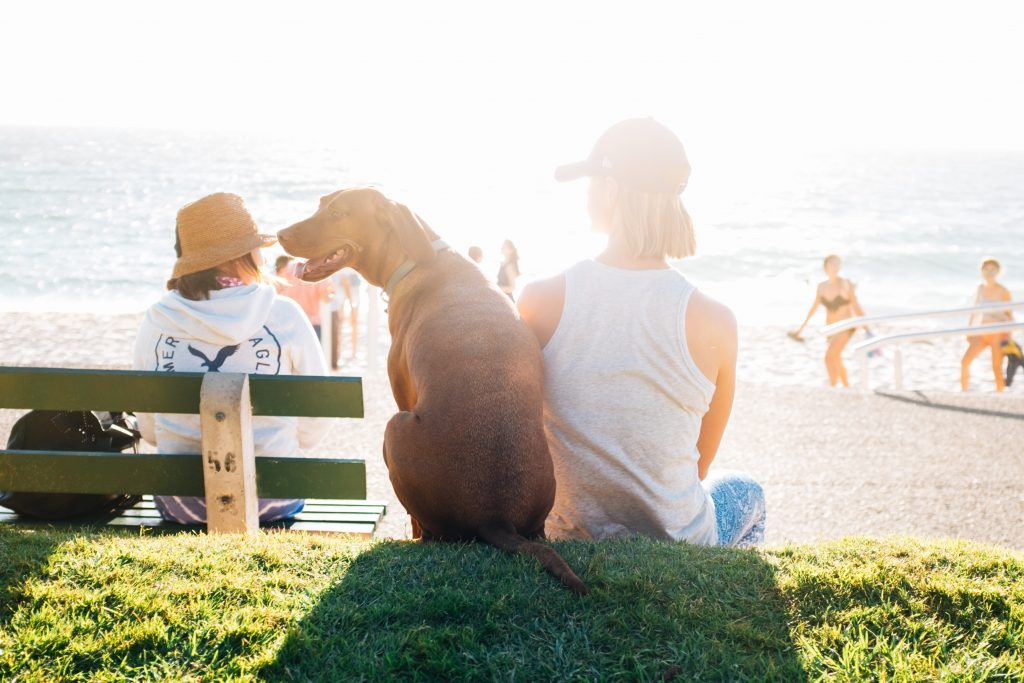 5 Tips for a Healthy Summer