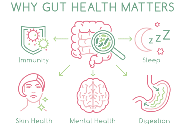 The Important Role Nutrition Plays on Gut Health